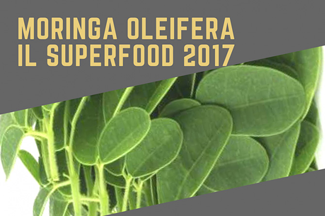 Moringa Oleifera: il superfood 2017